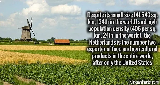 1086 Netherlands Farming