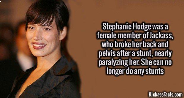 1278 Stephanie Hodge