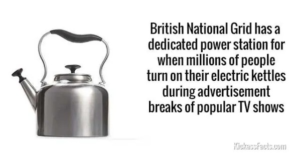 732Electric kettles