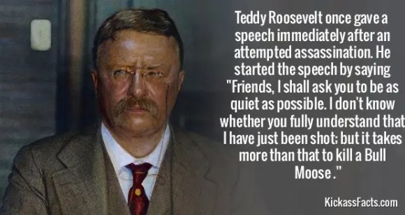 746Teddy Roosevelt