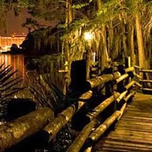 Discovery Island-Interesting Facts About Disney