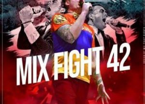 Mix Fight 42