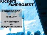 Auswärtsfragebogen zum Spiel am 13.08.2019 gegen TSV Essingen