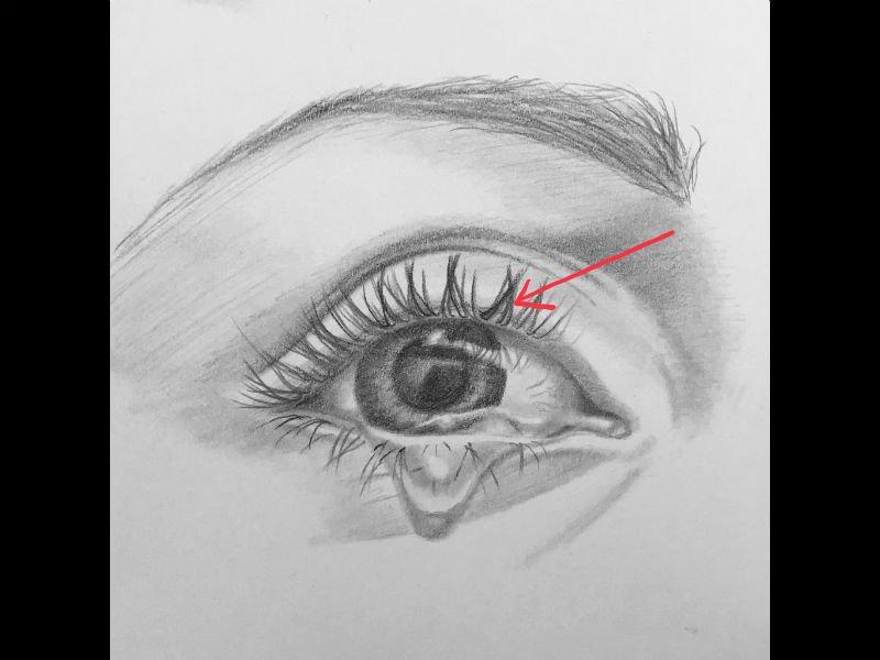 Drawng eyes sketch