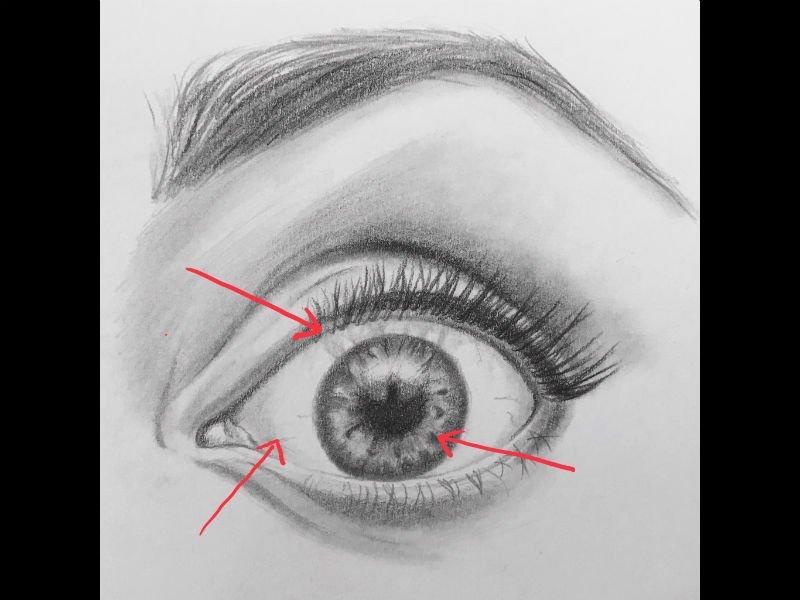 drawing eyes tutorial sketch