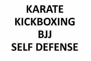 martial arts self defense schools