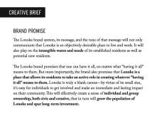LONOKE-SLIDES-4-11_Page_2