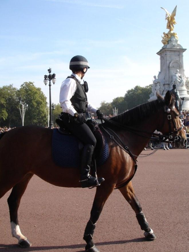Police horse outside Buckingham Palace