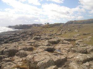 Dunstanburgh Castle beach and Craster