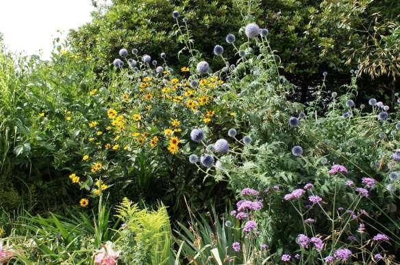 Hever Castle Gardens Flowers Kent