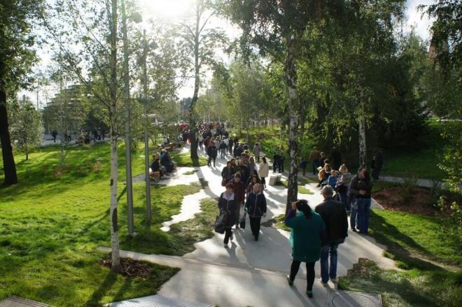 Birch Trees New Zaryadye Park Moscow