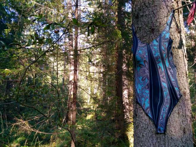 Swimming costume nailed to a tree