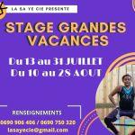 stage ecole de cirque