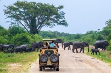 8 days Kidepo Valley wildlife safari in Uganda