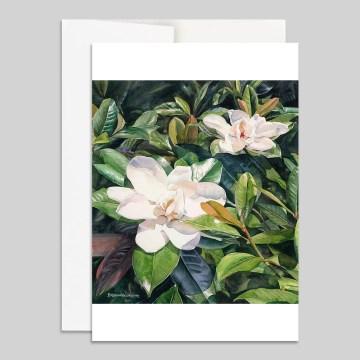 Summer Magnolias