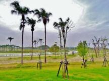 農業博覽會正在整建中的廣大綠地,以及天然淨水用的水池~