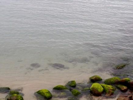 外木山海岸應是岩岸,和石門的綠槽石一樣,春天之後也會見到綠色石丸~ ^^