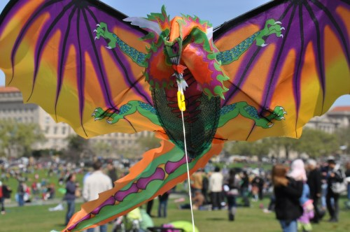 Go fly a kite on the National Mall!