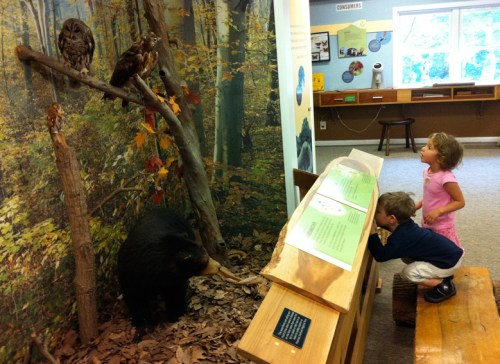 Checking out an exhibit at the Potomac Overlook Park Nature Center