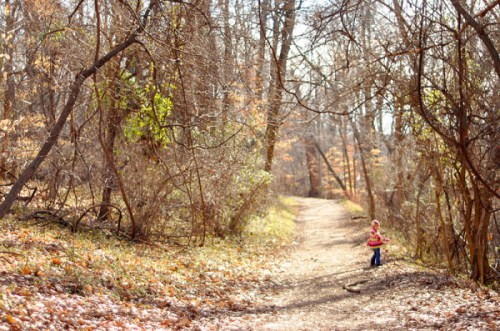 A winter hike at Roosevelt Island...it's even prettier in the spring.