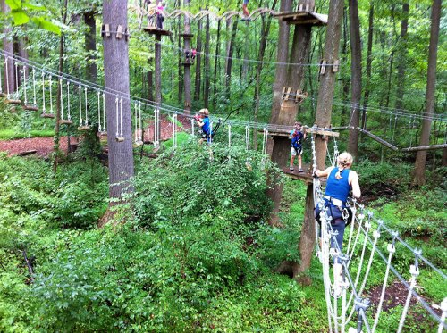 Navigate the aerial forest at the Adventure Park at Sandy Spring