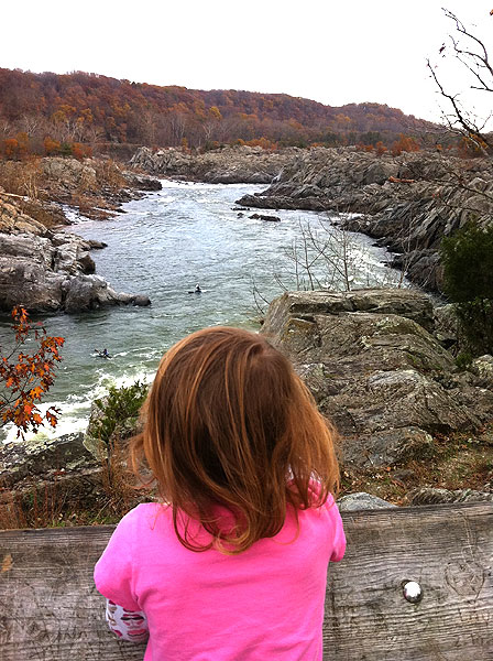 Watching kayakers at Great Falls, open again after the shutdown
