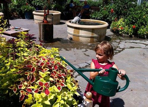 Kids can flex their green thumbs at the U.S. Botanic Garden