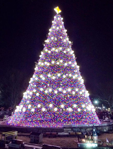 The National Christmas Tree (photo, courtesy my awesome friend, Torey)