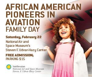 African-American_300x250_Hazy