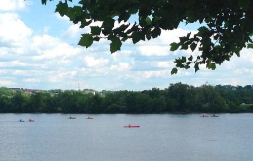 yards_paddle