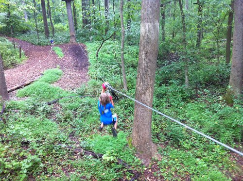 Zip among the trees at the Adventure Park at Sandy Spring