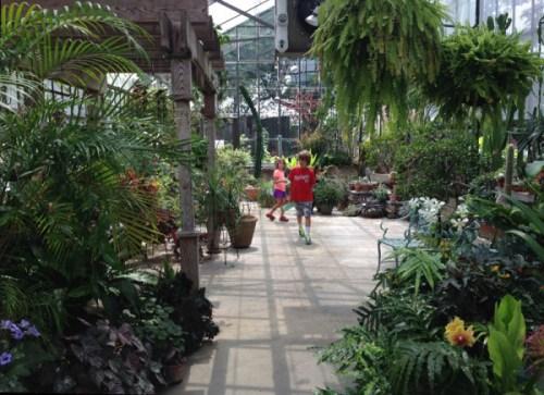 gsgp_greenhouse