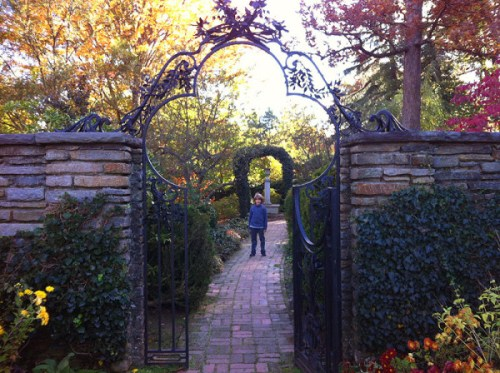 Roam free at Dumbarton Oaks gardens -- there's no entry fee right now!