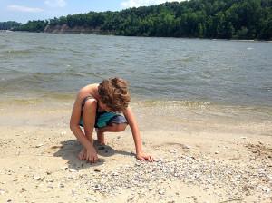 Searching for shark teeth