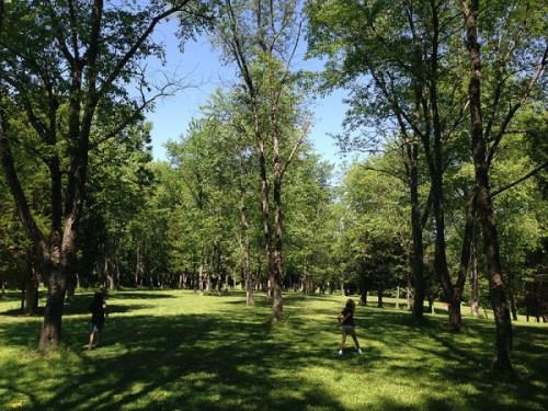 Flinging Frisbees at Seneca Creek State Park