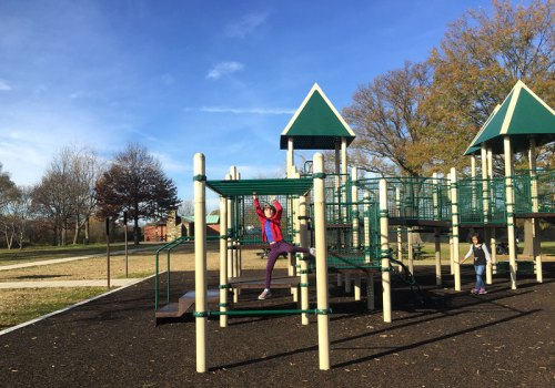 Monkey around on the Hains Point playground
