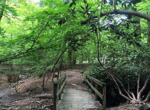 woodend_bridge