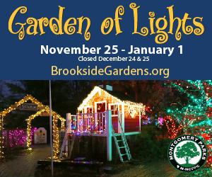 garden_of_lights