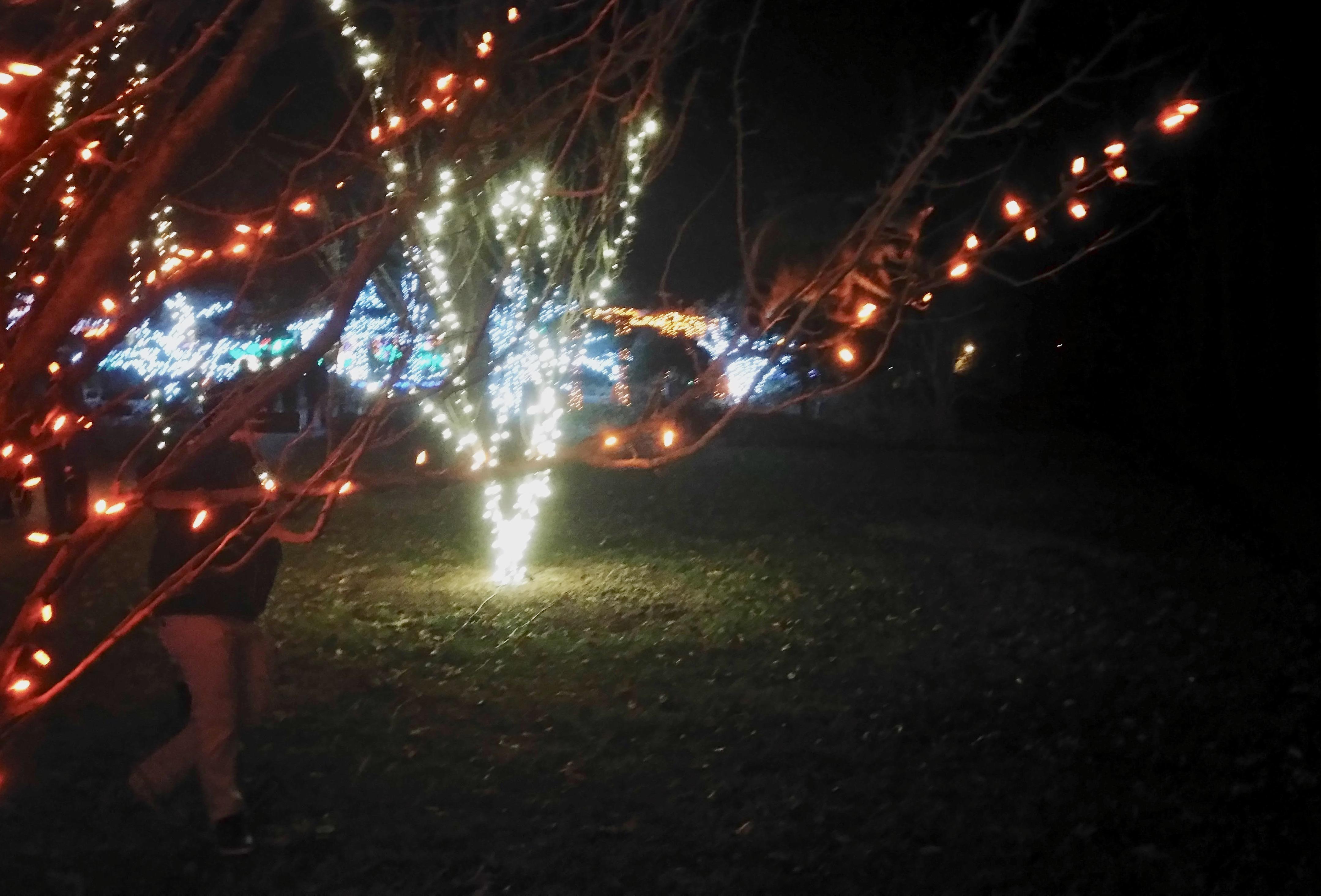 dc holiday light displays kidfriendly dc