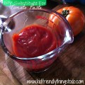 Tomato Paste Substitute