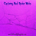 Capturing Real Spider Webs! This is a fun science activity, or just a cool Halloween decoration!
