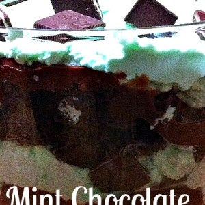 Whoa! Mint Whipped Cream, Irish Cream soaked chocolate cake, Chocolate Pudding, and Andes Mints!