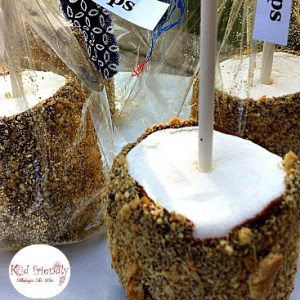Make S'mores Marshmallow Pops. They are a lot less expensive than S'mores, and a very fun substitute! KidFriendlyThingsToDo.com