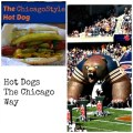 The Chicago Style Hot Dog lesson on toppings, and what Not to do!