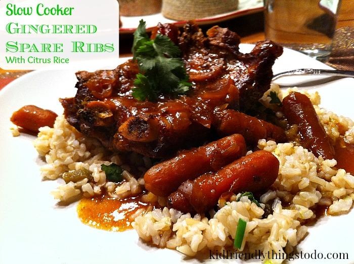 Amazing Slow Cooker Rib Recipe! Delicious!