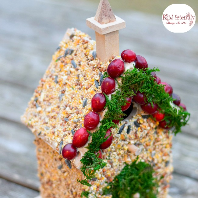 Decorating Beautiful Birdhouses With Edible Bird Seed Glue Craft