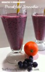 Healthy Four Ingredient Blueberry Breakfast Smoothie! Delicious, and Nutritious!