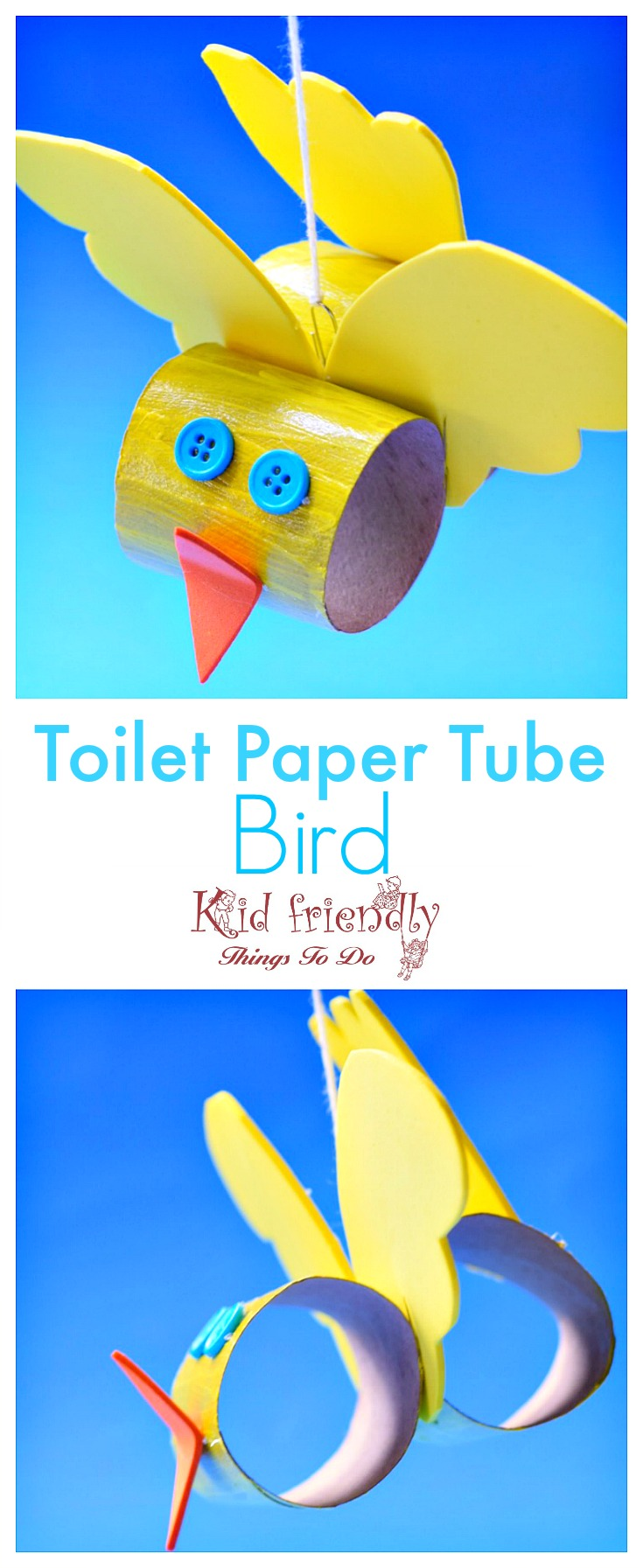 Make A Cute Toilet Paper Tube Bird Craft With Kids - Easy -6799