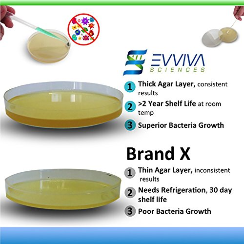 Amazing Bacteria Science Kit – Best Selling Prepoured Agar ...