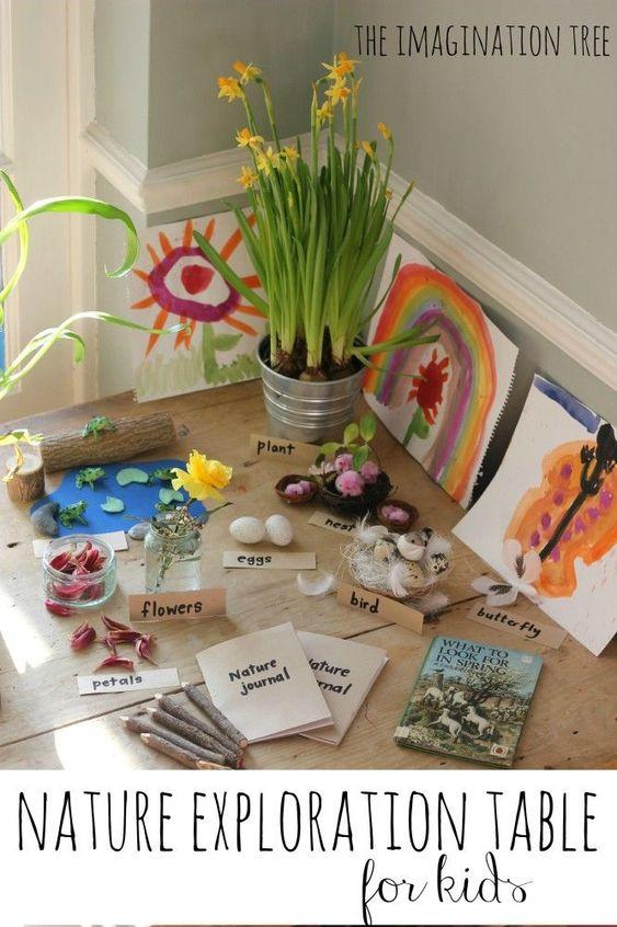 table de la nature Montessori
